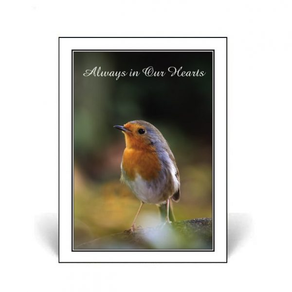 Nature's Beauty Memorial Cards featuring a robin perched on a branch.