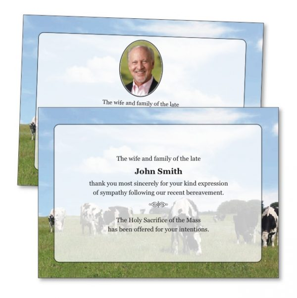 TYC31 - Acknowledgement Card featuring grazing cows